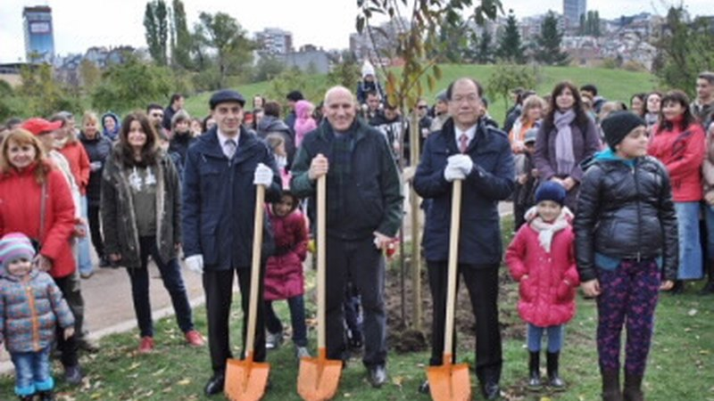 Employees of UniCredit Bulbank planted 130 Japanese cherry trees in Yuzhen Park