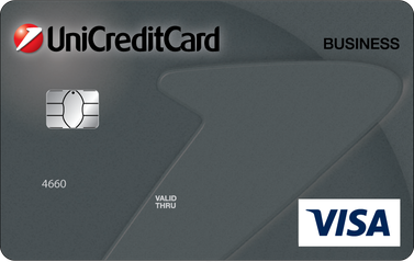 Credit Card VISA Business Credit